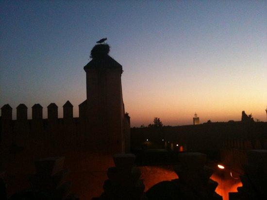 Dar Les Cigognes: Abendstimmung Dachterrasse