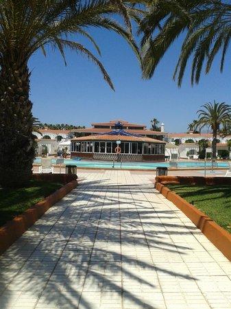 Duna Beach Bungalows: bar and pool