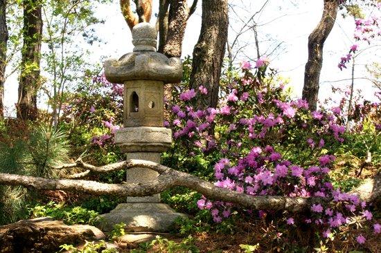 Japanese Garden Picture Of Chicago Botanic Garden Glencoe Tripadvisor