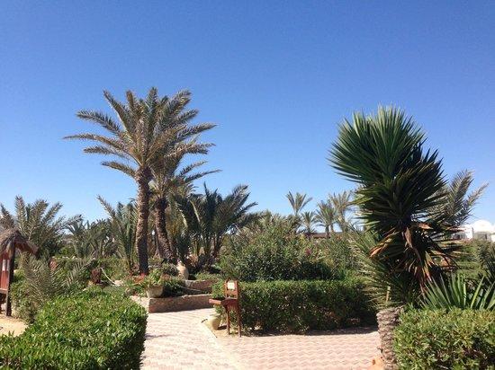 Seabel Rym Beach : Les jardins