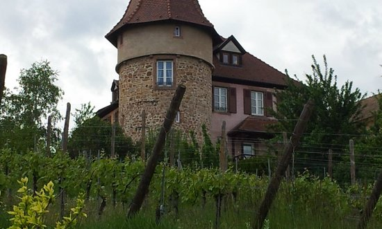 Clos Froehn : The Zimmer House
