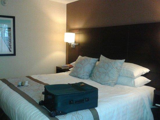 Rodd Royalty : Comfy beds