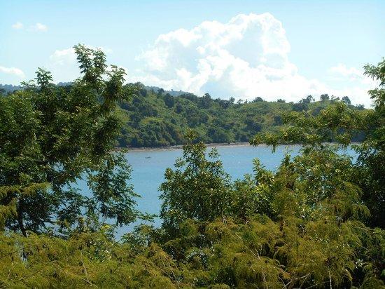 Les Bangas : Vue de la piscine