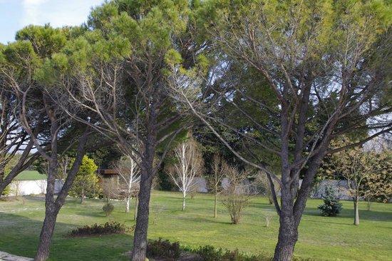 Le Clos des Sorgues: Au milieu du parc, une cabane