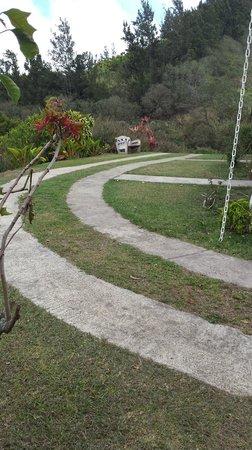 Belcruz B&B : Sur le chemin qui mène au jardin