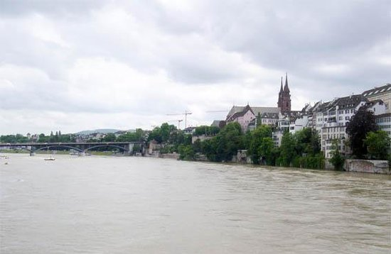 Rheinfähre: view of the river bank