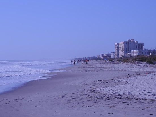 DoubleTree by Hilton Hotel Cocoa Beach Oceanfront: Plage devant l'hôtel