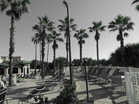DoubleTree by Hilton Hotel Cocoa Beach Oceanfront : Espace autour de la piscine
