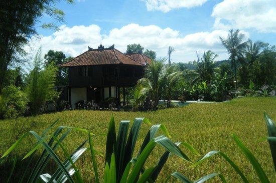 Atres Villa Homestay : Bungalow près de la piscine
