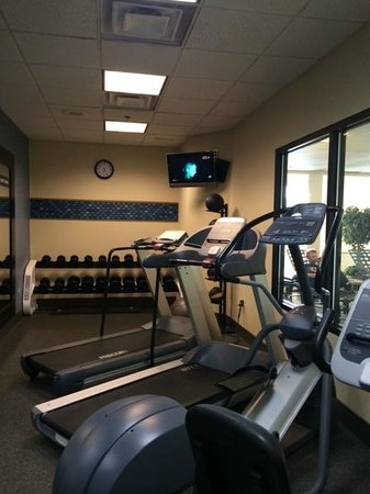 Hampton Inn Boston-Norwood: Gym