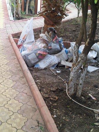 Dorian Hotel: LOvley bags of rubbish