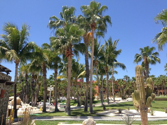 Paradisus Los Cabos : Grounds