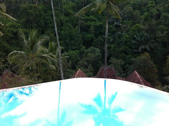 Ayung Resort Ubud: Jungle Reflection