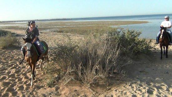 Sunrise Select Garden Beach Resort & Spa: Прогулка на лошадях (домой)