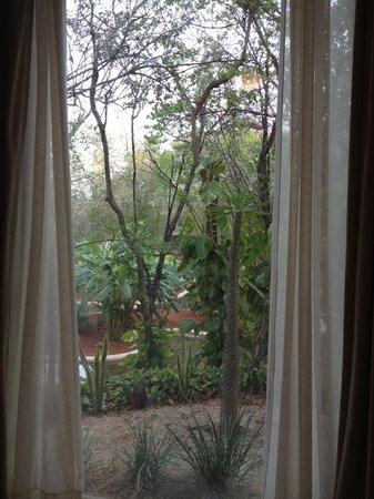 Hotel Oka'an: La chouette vue de notre chambre