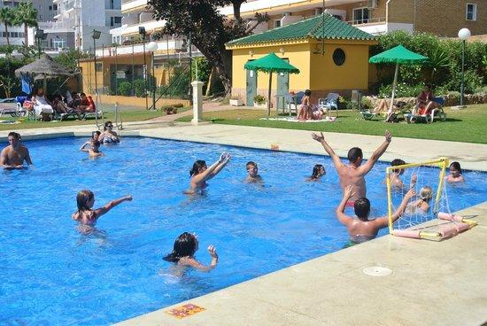 La Barracuda Hotel : activités piscine
