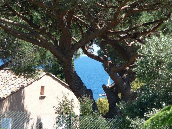 Domaine du Calidianus : Apercu mer de la chambre 17