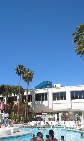 Tropicana Las Vegas - A DoubleTree by Hilton Hotel: Pool area