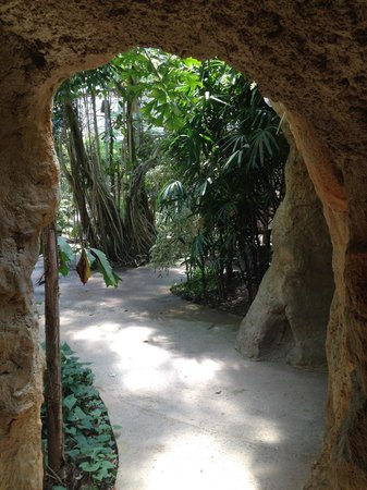 Butterfly Park Empuriabrava : Exit from cave