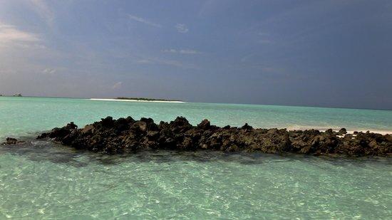 Rasreef Maldives: A 5 minutes - juste en face...