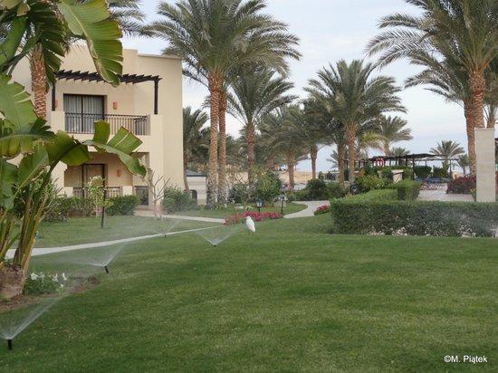 Jaz Lamaya Resort : Green