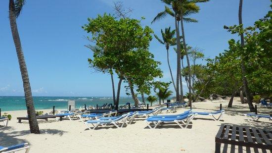 Grand Paradise Playa Dorada: La plage devant l'hôtel (à 10 mètres)