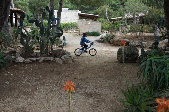 Residence Miramare : i bambini giocano all'ombra di pini negli ampi spazi comuni