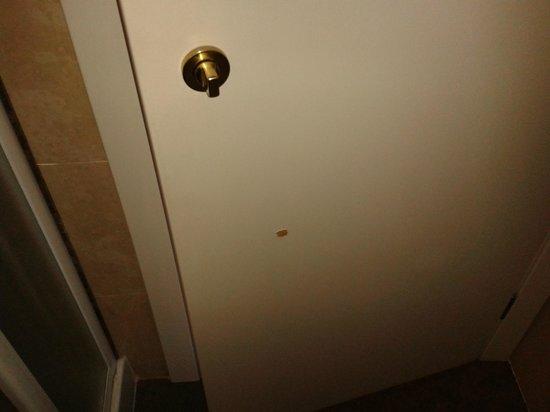 Hotel Mozart : Badezimmertür defekt