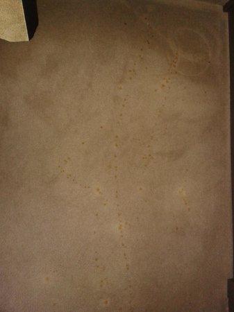 Hotel Mozart : Flecken im Teppich