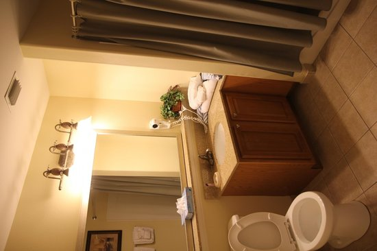 Blue Heron Beach Resort : Bathroom