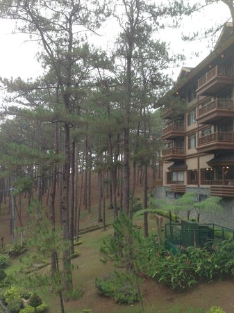 The Manor at Camp John Hay: rooms facing the forest