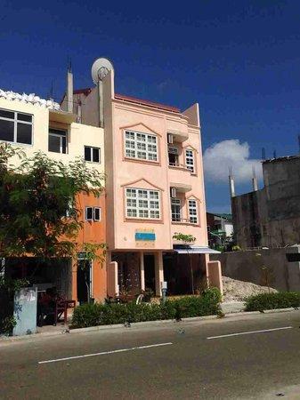 Alaya Inn : Exterior view