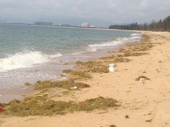 Renaissance Sanya Resort & Spa: Beach Sanya - no way to go swim there