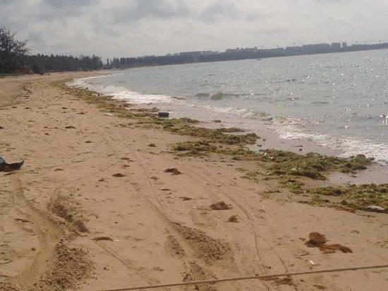 Renaissance Sanya Resort & Spa: Beach Sanya