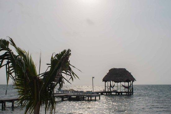 Barefoot Beach Belize: Aussicht