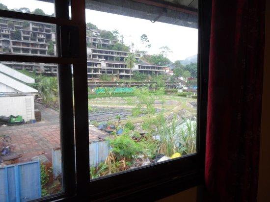 Phi Phi Dream Guest-House: Ausblick auf's Abwasser-Biotop und die Karoke Bar dahinter