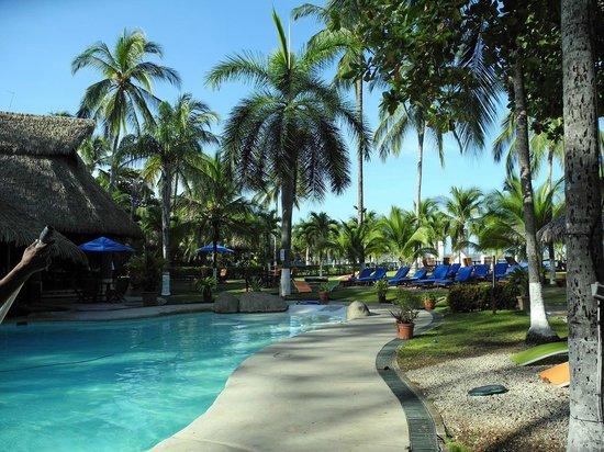 Bahia del Sol Beach Front Boutique Hotel : Blick auf Pool und Garten