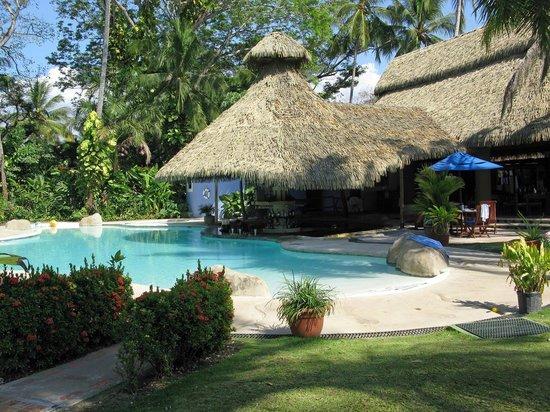 Bahia del Sol Beach Front Hotel & Suites : Blick vom Garten auf den Pool und die Poolbar