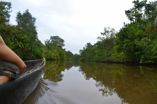 Orinoco Eco Camp: Canoe Ride