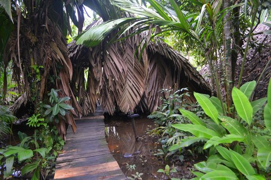 Orinoco Eco Camp: The entrance to your 'room'