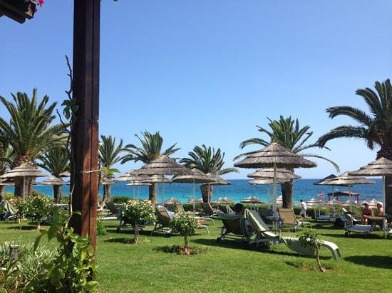 Alion Beach Hotel: Sunbed reservations, a great idea.