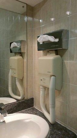 Croydon Park Hotel: Hair dryer