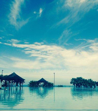 Gran Melia Palacio de Isora Resort & Spa : Infinity pool!!!!