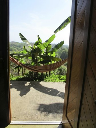 Costa Rica Yoga Spa: View from my room