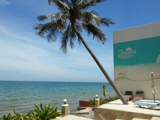 Shades Resort: Small private beach