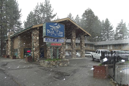 Blue Jay Lodge: Surprise Snow Flurries in Mid-May!  Front of motel!