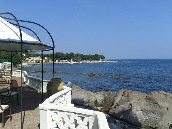 La Villa Mauresque : Vue depuis le jardin en front de mer
