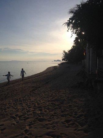 Sea Love Bungalows: Beachfront
