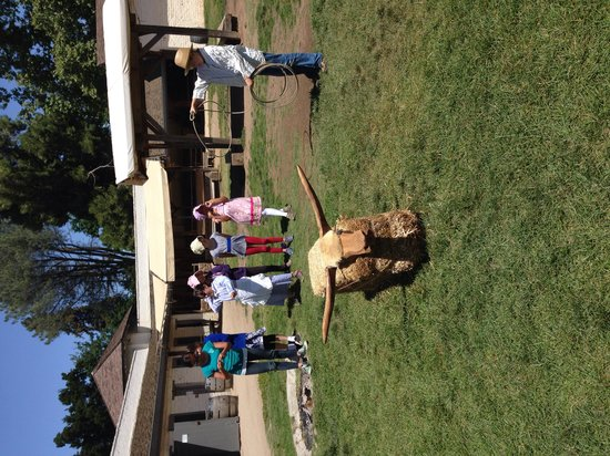 Sutter's Fort State Historic Park: Lasso lessons by the Vaquero
