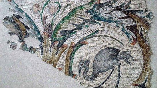 Mosaic Museum: particolare del mosaico bizantino del V secolo